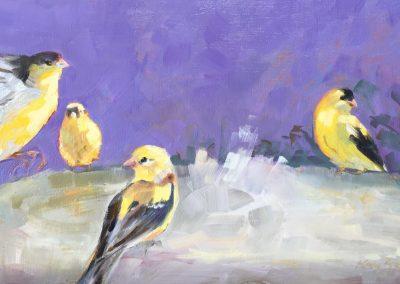 Kay-Zetlmaier-Backyard-Finches-6x12-oil