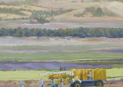 Kay-Zetlmaier-Sunday-in-Salinas-16x16-oil