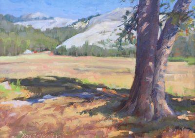 Kay-Zetlmaier-Tuolumne-Meadows-12x16-oil